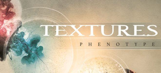textures phenotype