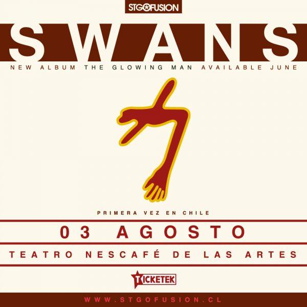 swans_1000x1000