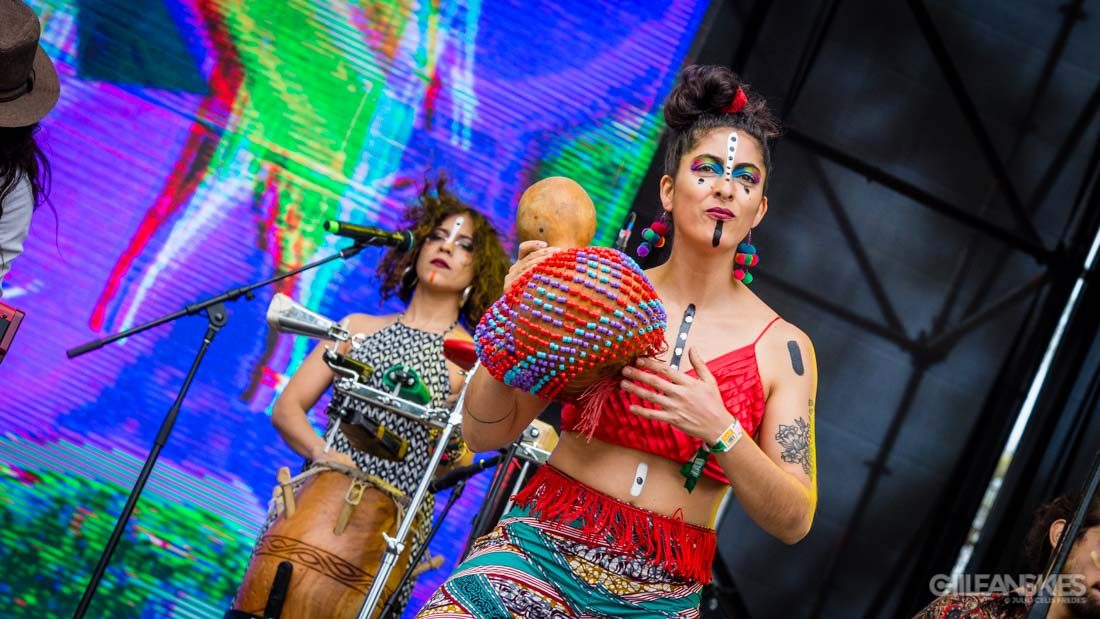 Newen Afrobeat - Lollapalooza Chile 2017
